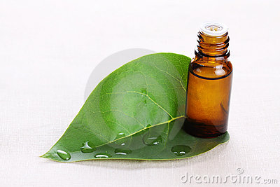 Aromatic oil with a green leaf