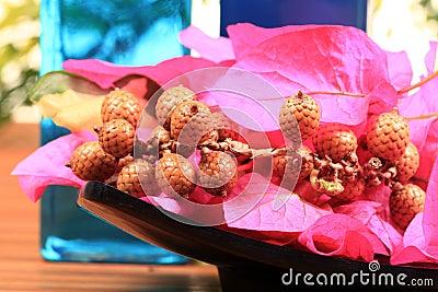 Aromatiska torra blommor