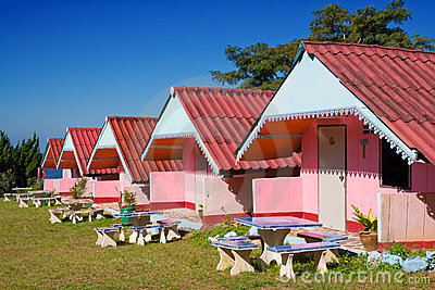 Arranged pink houses in a yard