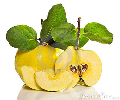 Arrangement of quince