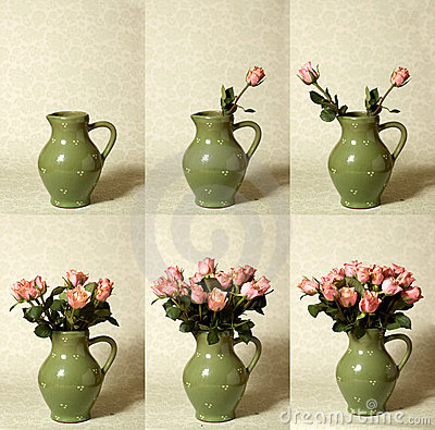 Arranging Flowers Sequence