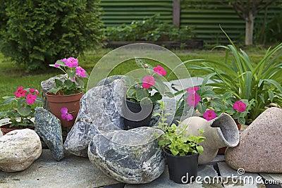 Arranjo De Flor No Jardim Fotos de Stock - Imagem: 31227343