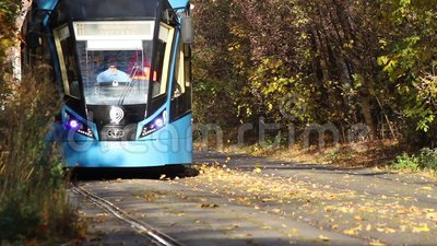 Arriving tram in a forest stock video