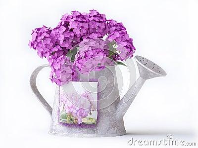 arrosoir avec les fleurs roses image stock image 17268051. Black Bedroom Furniture Sets. Home Design Ideas