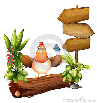 Arrow boards with a hen and a butterfly