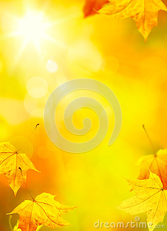 Free Art Abstract Autumn Yellow Leaves Background Royalty Free Stock Photography - 33216617