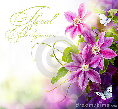 Free Art Abstract Spring Floral Background For Design Stock Photo - 20548410
