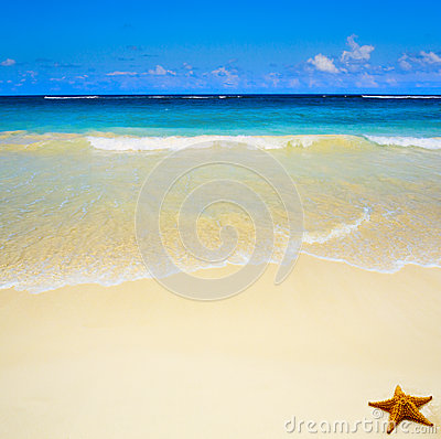 Art  beautiful untouched tropical sea beach