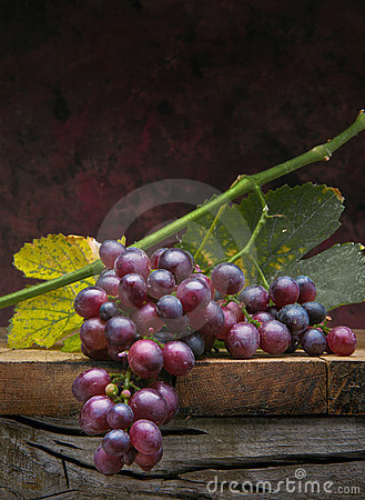 Free Art Bunch Grapes With Leaves On Dark Background Royalty Free Stock Photography - 21131317