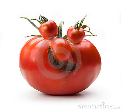 Art cheerful Mr. Tomato humor