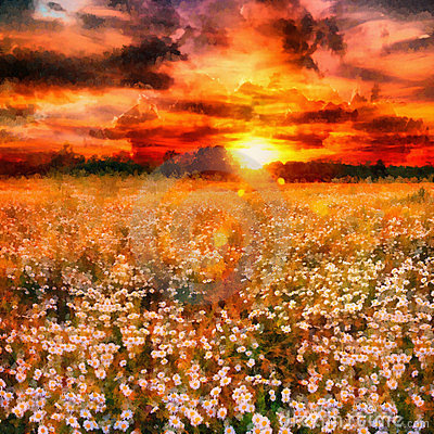 Art daisy meadow