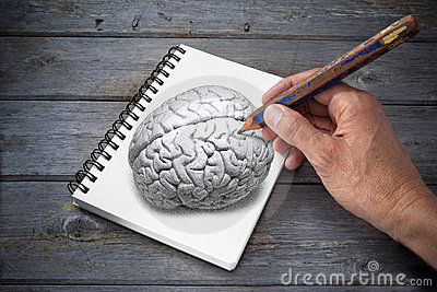 Art Drawing Brain Creativity