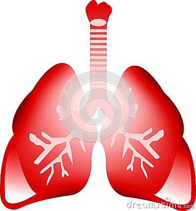 Art lung
