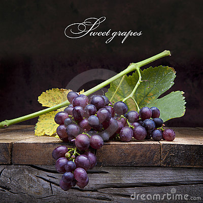 Art purple grapes  on old wooden background