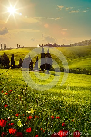 Free Art Spring Farmland And Country Road; Tuscany Countryside Rolling Hills Royalty Free Stock Image - 139093376