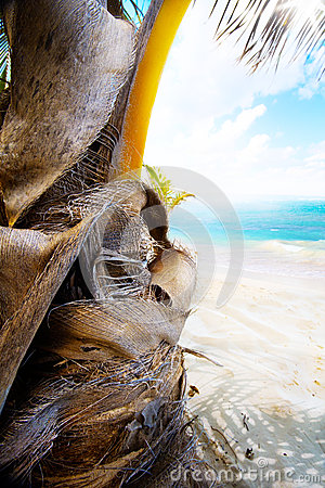Art summer tropical beach