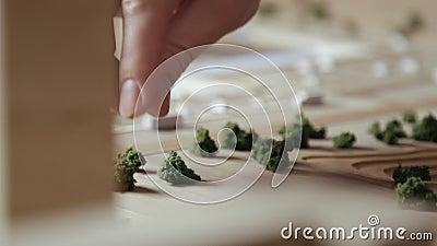 Artesão Arranges Decorative Shrubs com dedos em uma disposição de madeira vídeos de arquivo