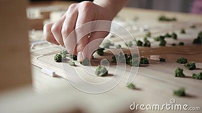 Artesão Arranges Decorative Shrubs com dedos em uma disposição de madeira video estoque
