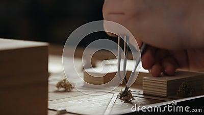 Artesão Arranges Decorative Shrubs com pinça em uma disposição de madeira filme