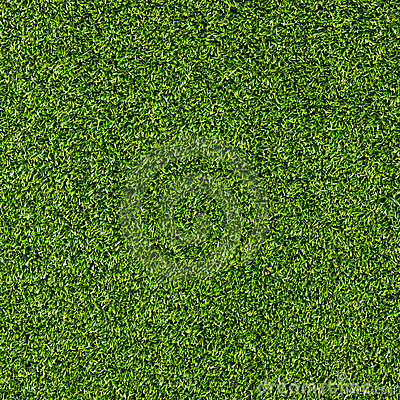 Free Artificial Grass Field Top View Texture Royalty Free Stock Image - 15626136