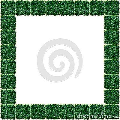 Artificial Grass  Frame