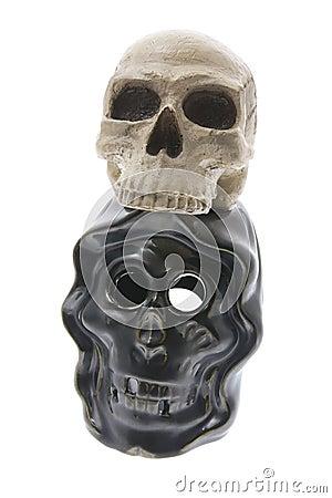 Artificial Human Skulls