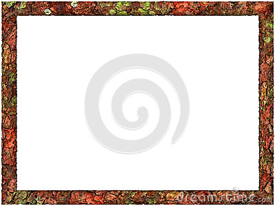 Artistic Abstract Foliage Frame