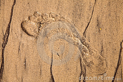 Artistic foot print in the sand