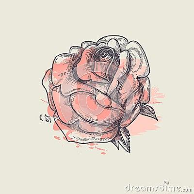 Artistic rose