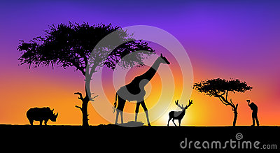 Artistic, a wild Animals