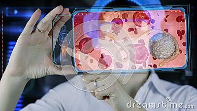 Arts met de futuristische tablet van het hudscherm ebola Bacteriën, virus, microbe stock videobeelden