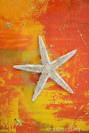 Artwork with starfish
