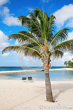 Free Aruba Royalty Free Stock Photos - 1898338