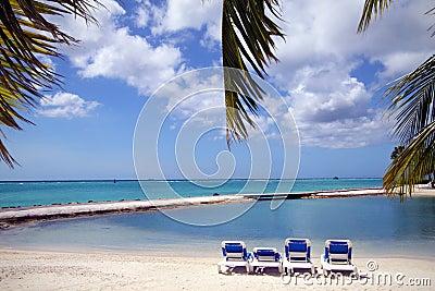 Aruba Beach Caribbean II