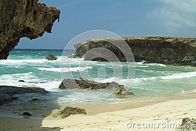 Aruba Coast 5