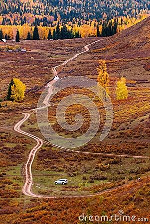 As árvores no outono