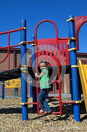 Ascending Playground Ladder