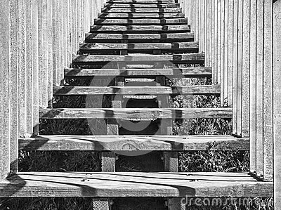 Ascending Wooden Stairs, Black-and-White