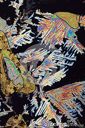 Ascorbic Acid Design