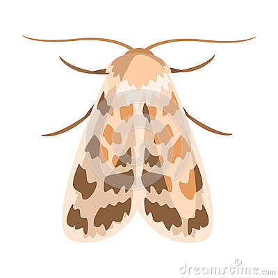 Free Ash Sphinx Moth Or Manduca Jasminearum. Colorful Cartoon Illustration Royalty Free Stock Photos - 89926968