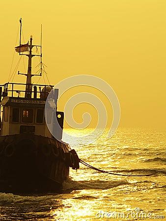 Ashore Ship