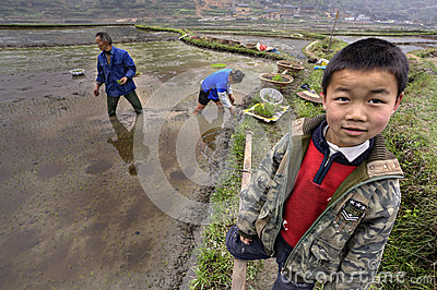 Asian boy in uniform stands next to flooded rice field. Editorial Stock Photo