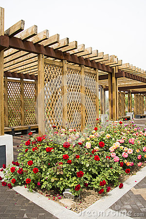 Free Asian China, Wood Structure House, Rose Stock Image - 40775821