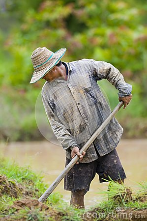 Asian farmer preparing the ground