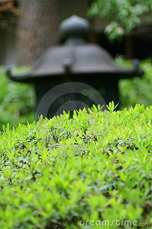Free Asian Garden Royalty Free Stock Photography - 2206867