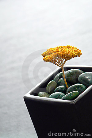 Asian Inspired Vase with Dried Yellow Flower