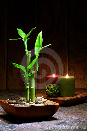 Asian Inspired Zen Relaxation Scene with Bamboo