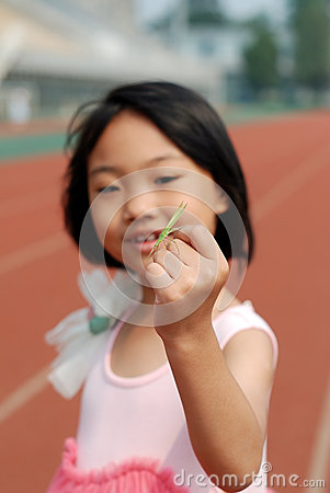 Asian little girl and mantis