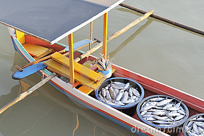 Asian outrigger fishing boat and fish