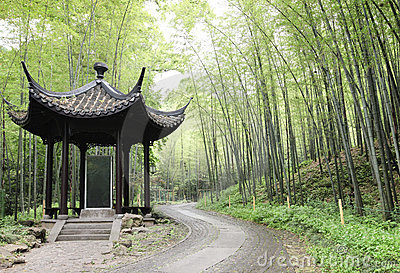 Asian Pavilion in bamboo forest